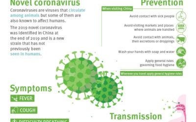 Aggiornamento 14 febbraio nuovo coronavirus SARS-CoV-2